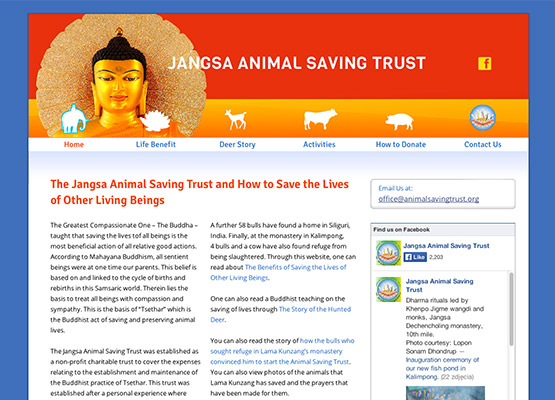 Animal Saving Trust